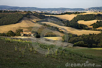 Rolling hills and countryside in Tuscany.