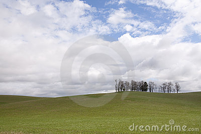 The rolling hills farmland