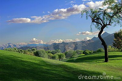 Rolling Hills Vista