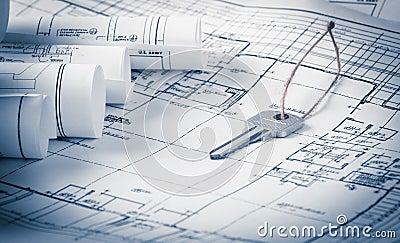 Rolls dei modelli e delle piante della casa di for Disegno della casa di architettura