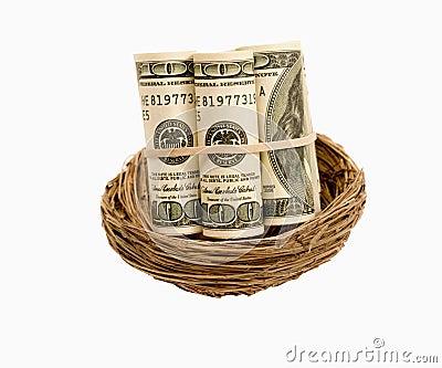 Rolls Of Money In Nest