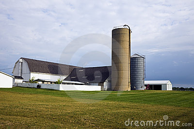 Rolny Illinois