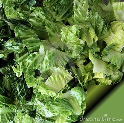 Romaine Lettuce - Recipe Page