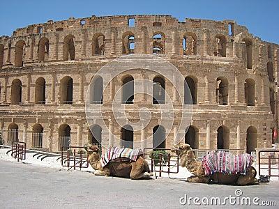 Roman amphitheatre - El Djem