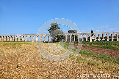 A Roman aqueduct on grassy meadow