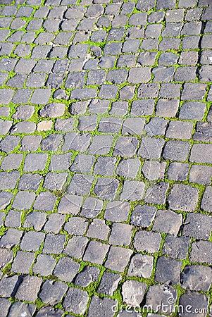 Roman cobblestones and green moss