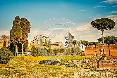 Roman empire ruins on Palatine Hill