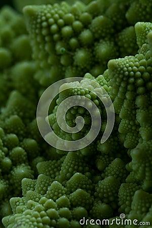 Free Romanesco Broccoli Close Up Stock Photography - 65737582