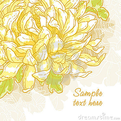 Romantic  background with chrysanthemum