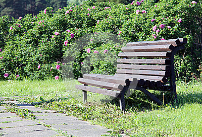 Romantic bench