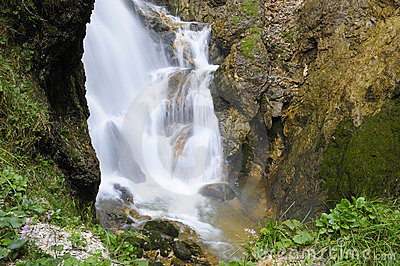 Romantic cascade in the wild ravine