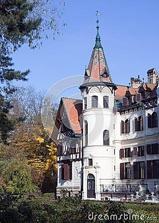 Free Romantic Castle Stock Photos - 16938813