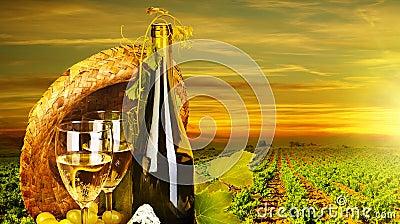 Romantic dinner at vineyard