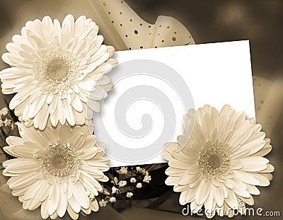 Romantic framework for congratulations