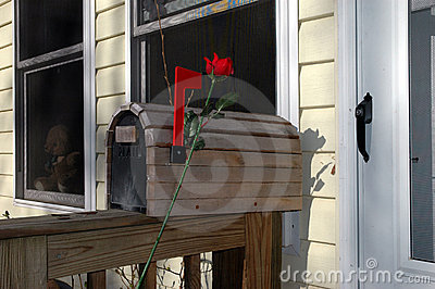 Romantic Mailbox with Rose