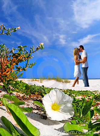 Free Romantic Moment On Beach Stock Photos - 7979443