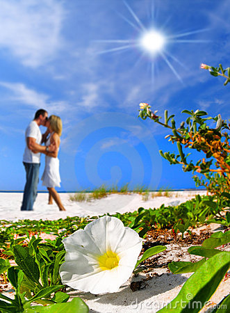 Free Romantic Moment On Beach Royalty Free Stock Photo - 8367785