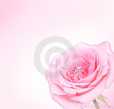 Romantic Pink Rose with diamond ring