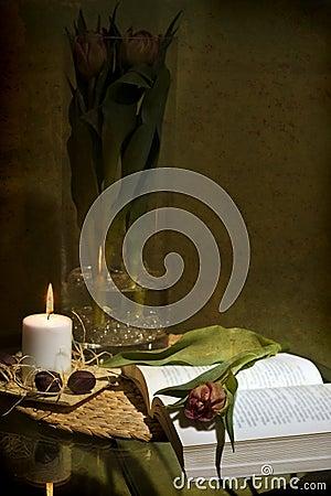 Romantic reading