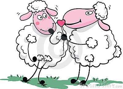 Romantic sheep