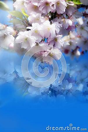 Romantic spring