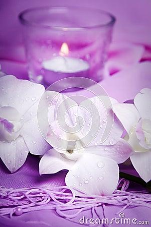Romantic wellness
