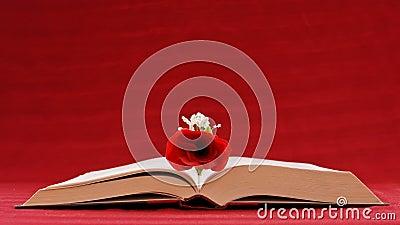Romantic Writing