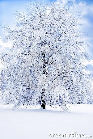 Romantischer Winter