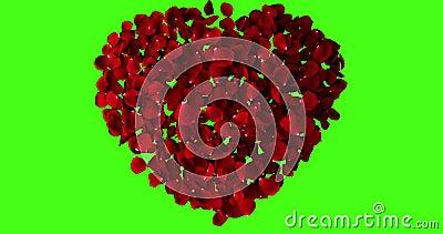 Rood hart van roze bloemblaadjes die met draaikolk op achtergrond van het chroma de zeer belangrijke, groene scherm vliegen stock videobeelden
