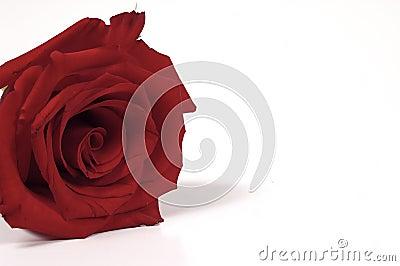 Rood nam toe
