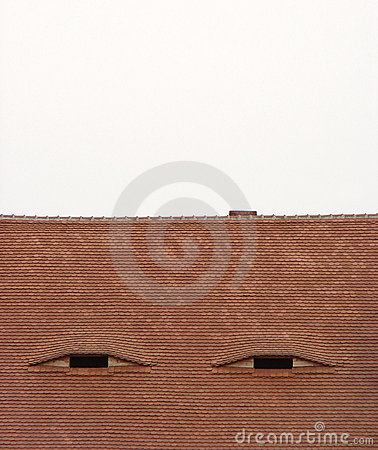 Roof With Chinese Eyes (Transilvania)