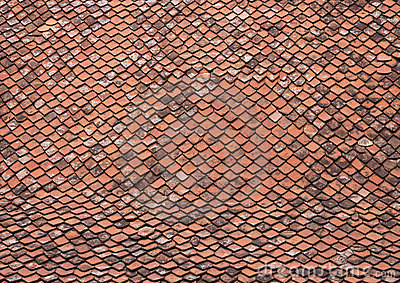 Roof with old tiles - RAW format
