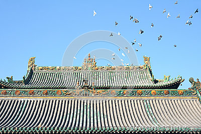 Roof and pigeons
