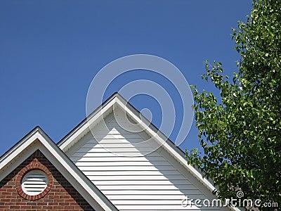 Roof & Sky & Tree