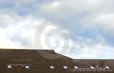Roof with skylights