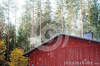 Roof in steams