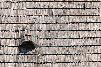 Roof wooden shingle texture
