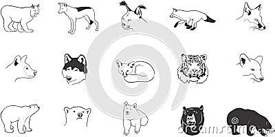 Roofdier dierlijke illustraties