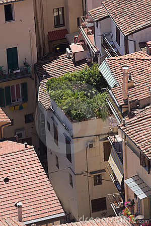 Roofs of aged city