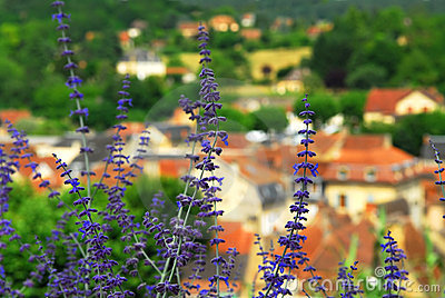 Rooftops in Sarlat, France
