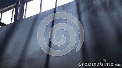 Rook stijgt tegen het raam, duisternis stock videobeelden