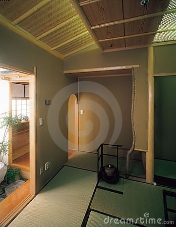 Room and Plant