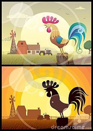 Free Rooster Crowing Stock Photo - 19851160