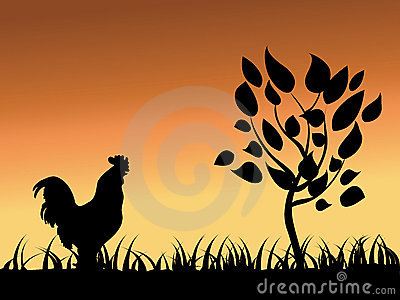 Rooster  and tree
