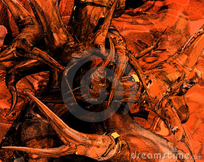 Root Growth Abstract