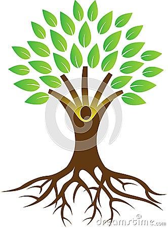 Free Root Tree Royalty Free Stock Photos - 43031918