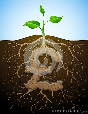 Pound sterling sign like root of plant