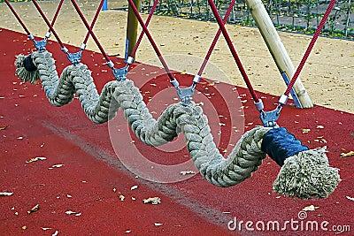 Rope snake
