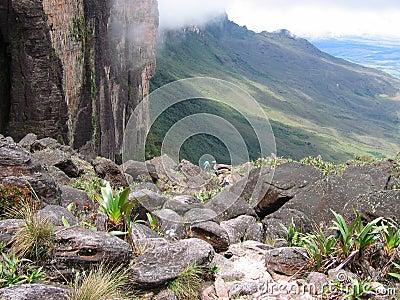 Roraima trail