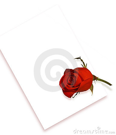 Rosa e letra